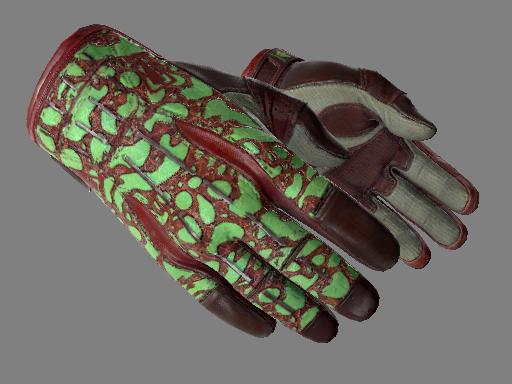 ★ Sport Gloves | Bronze Morph (Minimal Wear)